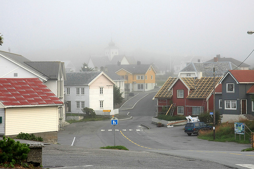 When I came out at 7 am this morning, the fog had made a takeover.