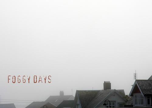 12-fog