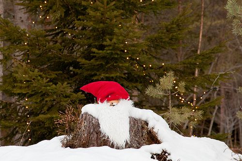 Santa in the woods.